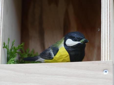 Vogelgucker 12