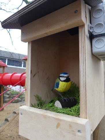 Vogelgucker 8
